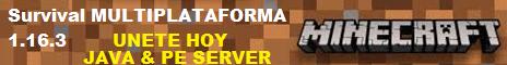 Servidor Minecraft Multiplataforma Java y Bedrock